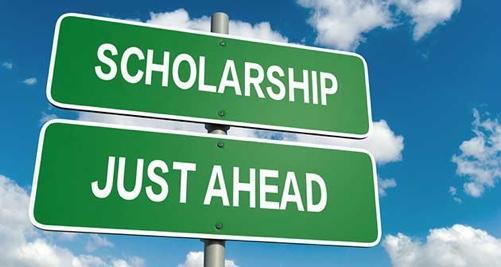 scholarship-arthro.jpg__501x267_q75_crop_subsampling-2_upscale